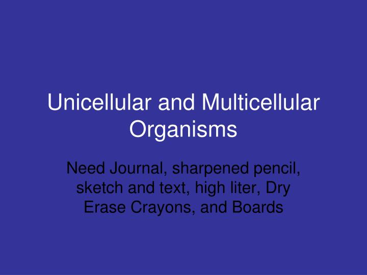 unicellular and multicellular organisms n.