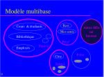 mod le multibase1