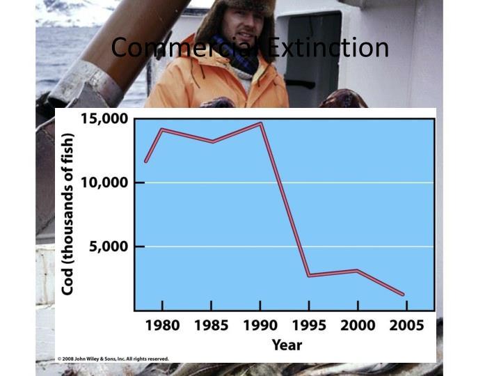 Commercial Extinction