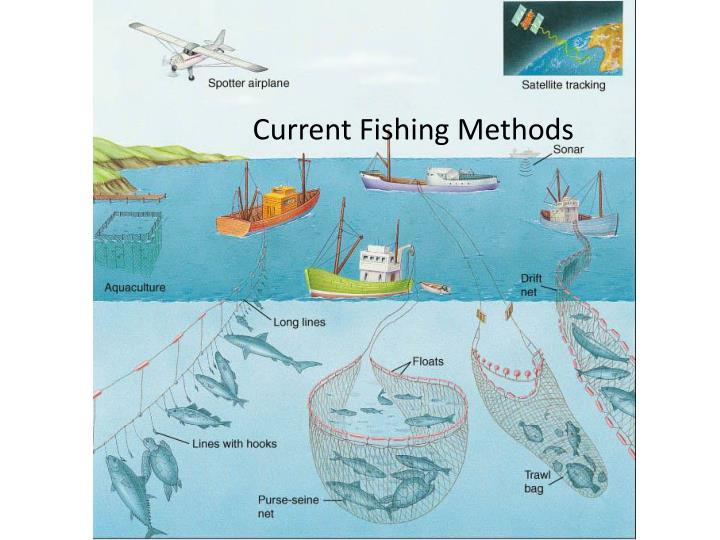 Current Fishing Methods