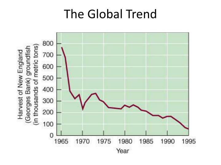 The Global Trend