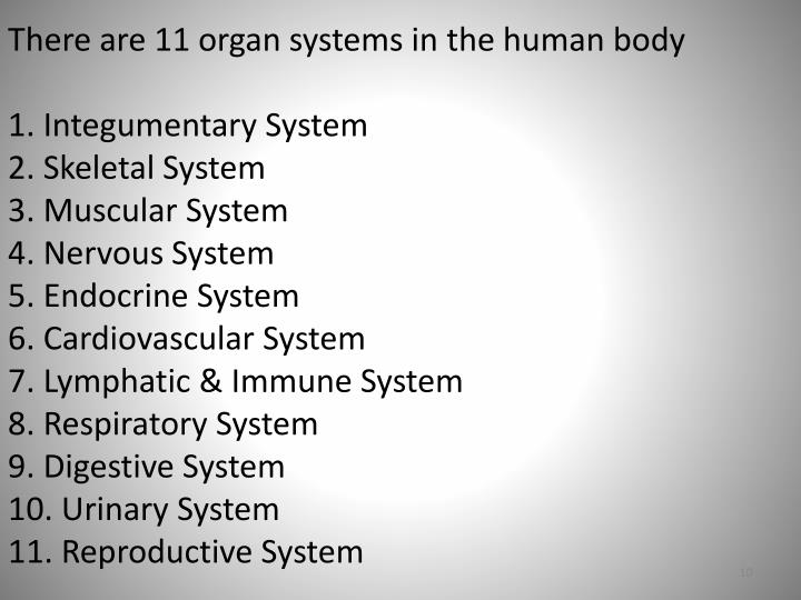 There are 11 organ systems in