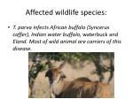 affected wildlife species