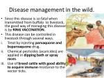 disease management in the wild