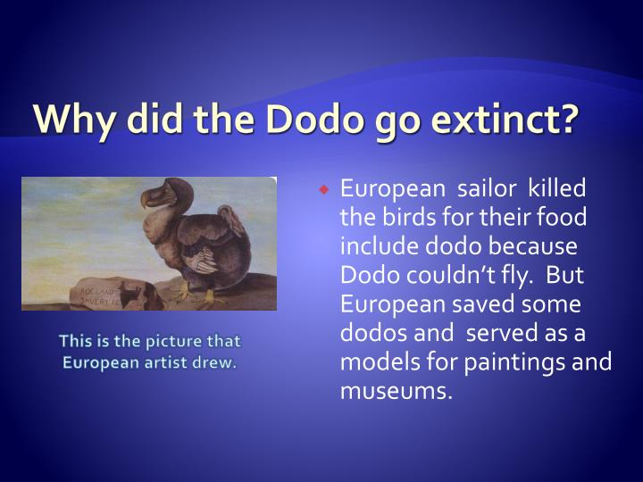 the biological description of the dodo and its extinction The dodo represents one of the best-known examples of extinction caused by humans, yet we know now, for the first time since its extinction, a 3-d atlas of the skeletal anatomy of the dodo has been published 150 years after sir richard owen's first scientific description of dodo anatomy.