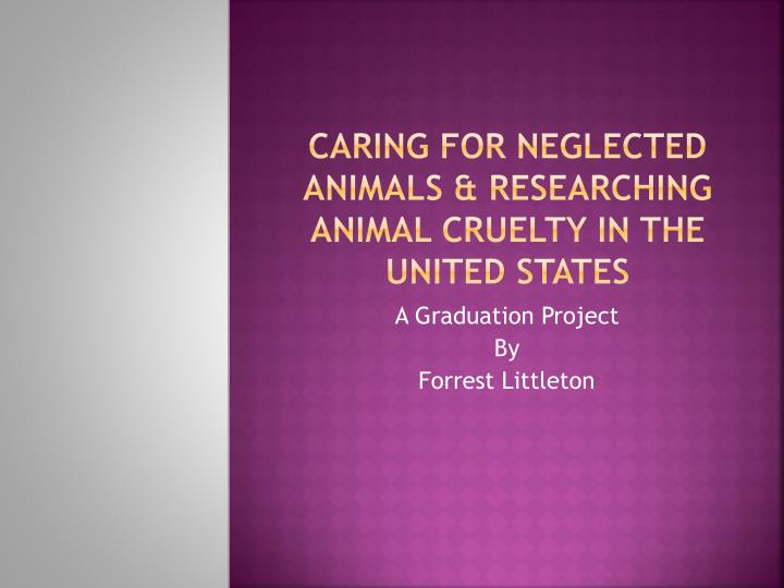 caring for neglected animals researching animal cruelty in the united states n.