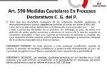 art 590 medidas cautelares en procesos declarativos c g del p1