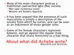 about what did achebe write1