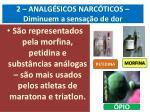 2 analg sicos narc ticos diminuem a sensa o de dor