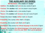 the auxiliary do does2