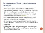 optimization what the consumer chooses2