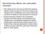 optimization what the consumer chooses4