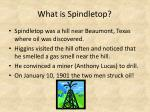 what is spindletop
