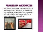 primjer na mikrorazini