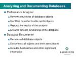 analyzing and documenting databases