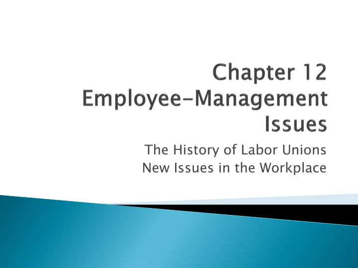 chapter 12 employee management issues n.