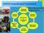 catch coordinated framework