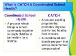 what is catch coordinated school health