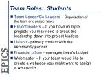 team roles students