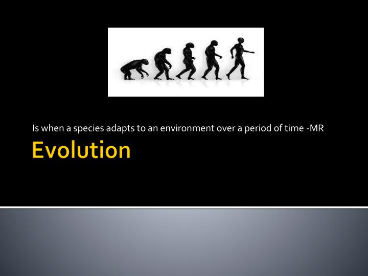 is when a species adapts to an environment over a period of time mr n.