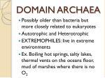 domain archaea