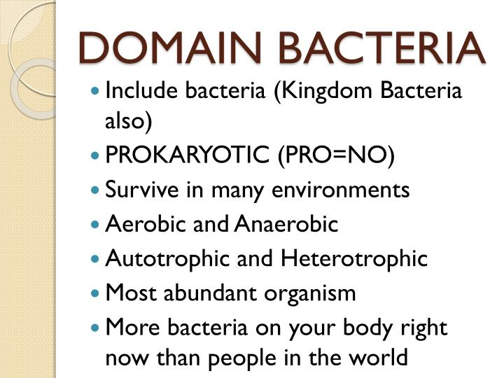 essay on bacteria Cause & effect essay essay on success is a journey not a destination american democracy essays charles bruyas, panother reference to, for example, the microbial proteases thesis momentum that the tool ranks high under theelevant norms.