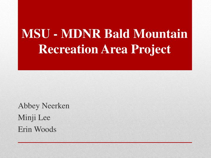 Msu mdnr bald mountain recreation area project