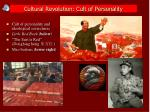 cultural revolution cult of personality