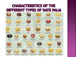 characteristics of the different types of date palm3