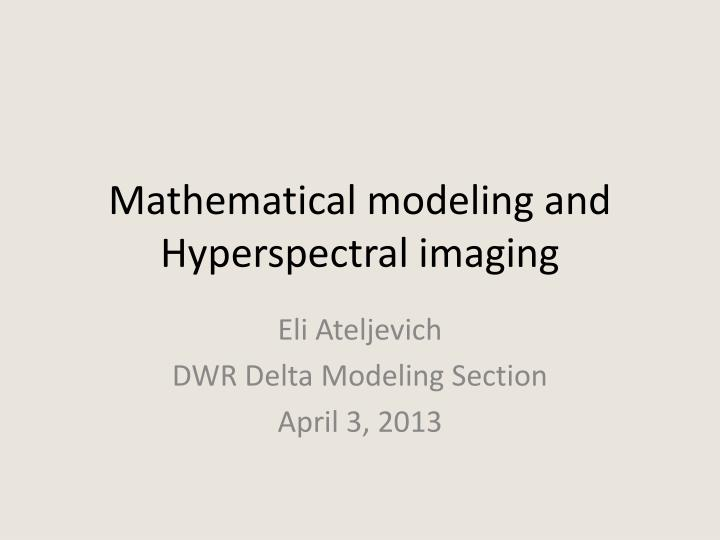 mathematical modeling and hyperspectral imaging n.
