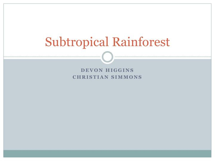 subtropical rainforest n.