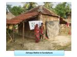 ashraya shelter in sundarbans1