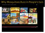 why mosquitoes buzz in people s ears