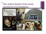 t he oldest fossils of the early ancestors of humankind