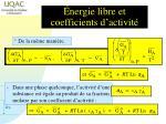 nergie libre et coefficients d activit1