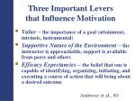 three important levers that influence motivation