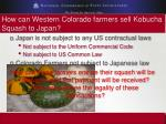 how can western colorado farmers sell kobucha squash to japan