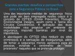 grandes eventos desafios e perspectivas para a seguran a p blica no brasil13