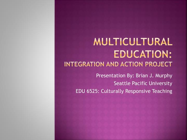 multicultural education integration and action project n.