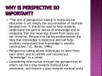 why is perspective so important