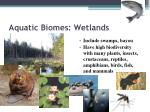 aquatic biomes wetlands