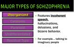 major types of schizophrenia1
