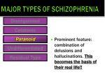 major types of schizophrenia3