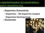 understanding schizophrenia brain abnormalities