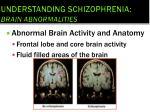 understanding schizophrenia brain abnormalities1