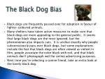 the black dog bias