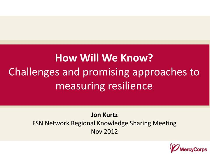 how will we know challenges and promising approaches to measuring resilience n.