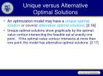 unique versus alternative optimal solutions