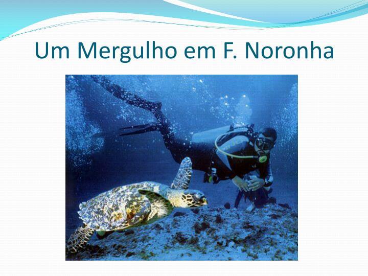 Um Mergulho em F. Noronha