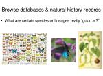 browse d atabases natural history records